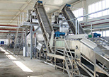Pulping Line